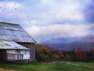 R1057D - Rivera, John - Vermont Afternoon