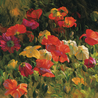 R577 - Roulette, Leon - Iceland Poppies