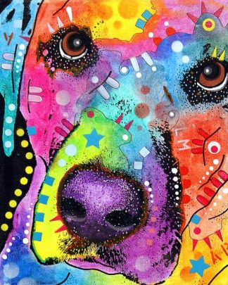 R971D - Russo, Dean - Closeup Labrador