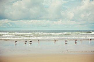 S1285D - Suchocki, Irene - Beachcombing