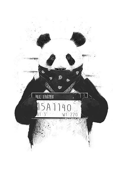 S1299 - Solti, Balazs - Bad Panda