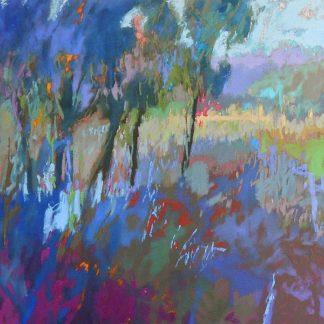 S1355D - Schmidt, Jane - Color Field 44