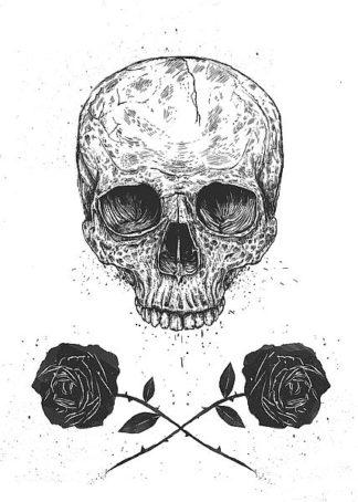 S1410D - Solti, Balazs - Skull N Roses