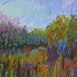 S1453D - Schmidt, Jane - Color Field 62