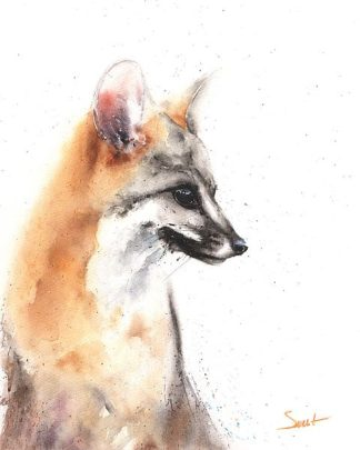 S1462D - Sweet, Eric - Grey Fox