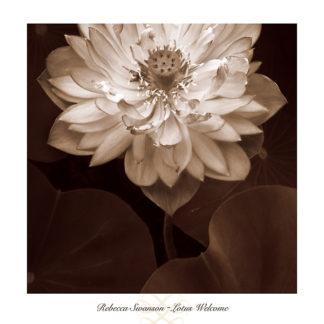 S783 - Swanson, Rebecca - Lotus Welcome