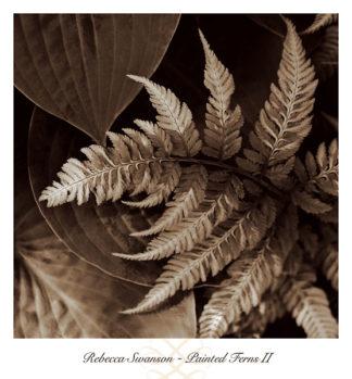 S786 - Swanson, Rebecca - Painted Ferns II