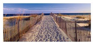 S975 - Sohm, Joseph - Pathway to the Beach