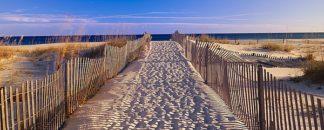 S975D - Sohm, Joseph - Pathway to the Beach