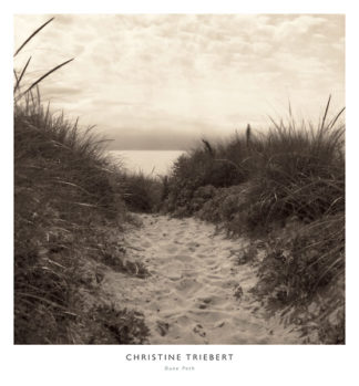 T278 - Triebert, Christine - Dune Path