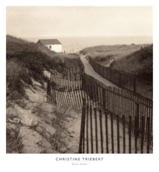 T279 - Triebert, Christine - Dune Fence