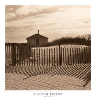 T305 - Triebert, Christine - Dune Shack