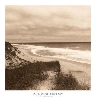 T306 - Triebert, Christine - Wellfleet Dune