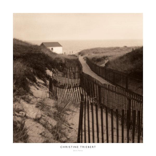 T307 - Triebert, Christine - Dune Fence