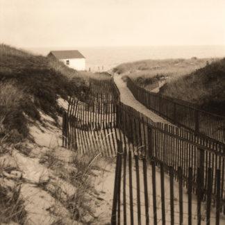 T307D - Triebert, Christine - Dune Fence