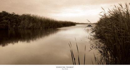 T313 - Triebert, Christine - River Reeds