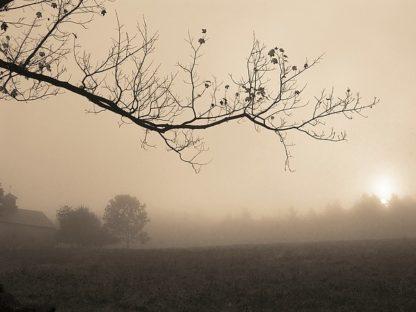 T314D - Triebert, Christine - Parish Hill Sunrise