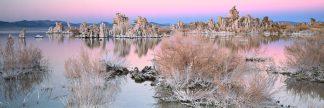 T468D - Thomas, Alain - Mono Lake Sunset