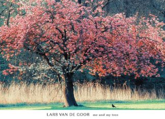 V516 - Van de Goor, Lars - Me and My Tree