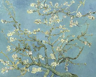V551D - Van Gogh, Vincent - Almond Blossoms, 1890