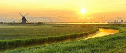 V585D - Van de Goor, Lars - Morning Meadow