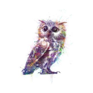 V594D - VeeBee - Owl