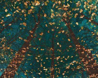 V610D - Van de Goor, Lars - Plato's Trees