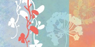 W527D - Weiss, Jan - Coral Flowers