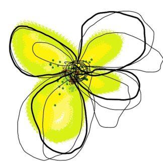 W547D - Weiss, Jan - Yellow Petals One