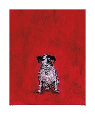 22935 - Toft, Sam - Small Dog