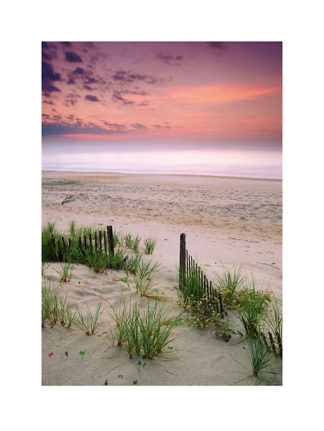 40262 - Unknown - Sunrise, Folly Beach, South Carolina