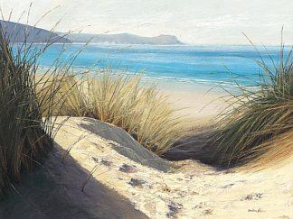 A320 - Atkinson, Caroline - Dune Shadows