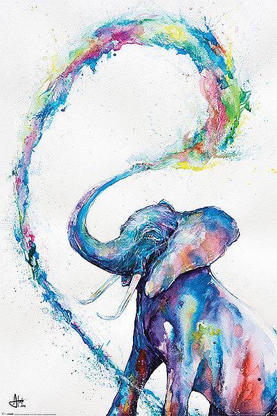 A414 - Allante, Marc - Elephant