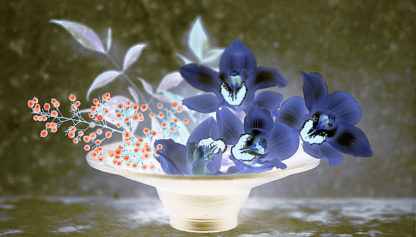 ABFLH02C - Blaustein, Alan - Floral Color #18