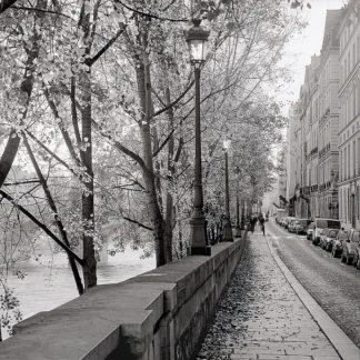ABFR1040 - Blaustein, Alan - Paris #23
