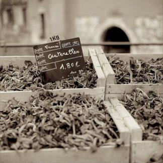 ABFR163 - Blaustein, Alan - Marketplace #38