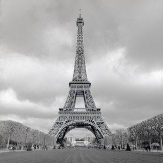 ABFR459 - Blaustein, Alan - Tour Eiffel #16