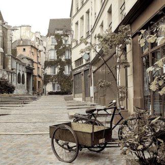 ABFRC1089 - Blaustein, Alan - Marais Bicycle