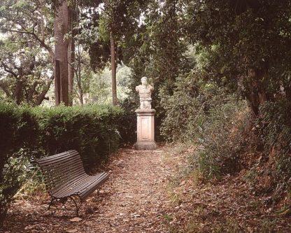 ABFRC123 - Blaustein, Alan - Banc de Jardin #23
