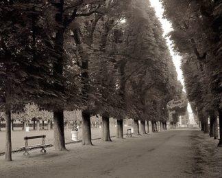 ABFRC147 - Blaustein, Alan - Banc de Jardin #47