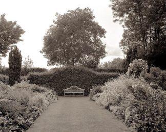 ABFRC161 - Blaustein, Alan - Banc de Jardin #61