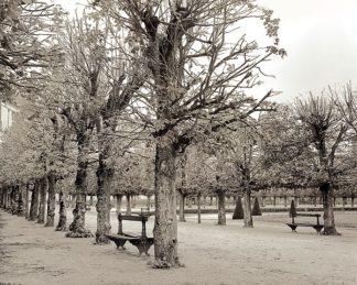 ABFRC163 - Blaustein, Alan - Banc de Jardin #63
