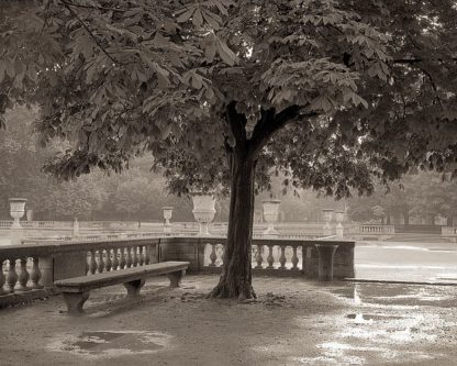ABFRC165 - Blaustein, Alan - Banc de Jardin #65