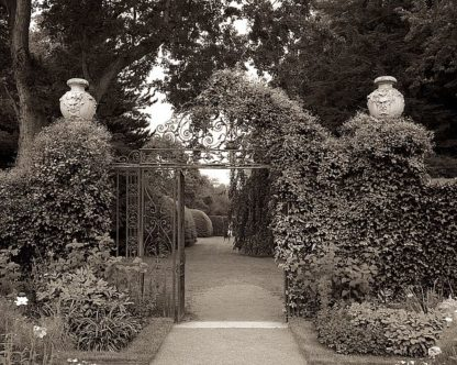 ABFRC176 - Blaustein, Alan - Banc de Jardin #76
