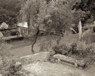ABFRC182 - Blaustein, Alan - Banc de Jardin #82