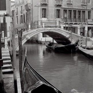 ABIT1669 - Blaustein, Alan - Venezia #3