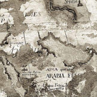 ABIT1924 - Blaustein, Alan - La Mappa #2
