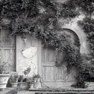 ABIT1938 - Blaustein, Alan - Tuscany #6
