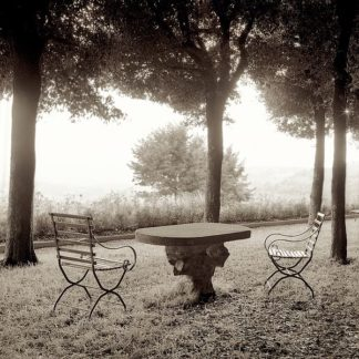ABIT1949 - Blaustein, Alan - Fiesole Giardini #1