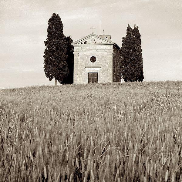 ABIT660 - Blaustein, Alan - Tuscany #9